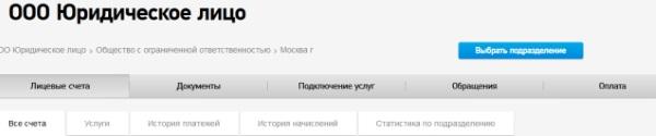 lk-dlya-yuridicheskikh-lic-001