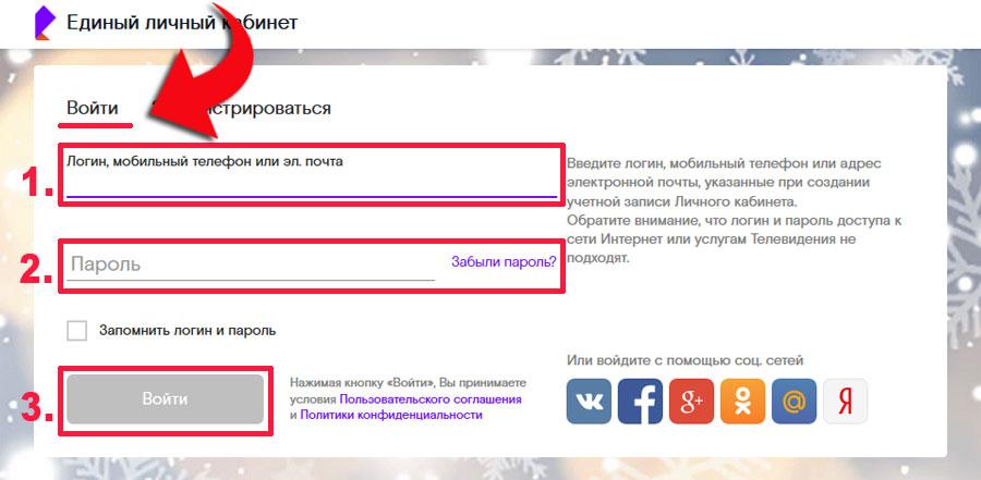 lichnyj-kabinet-rt-005
